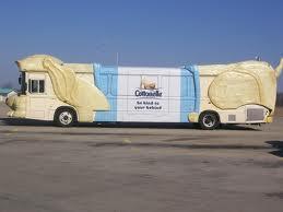 Gymbus-puppy-bus